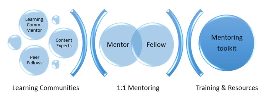 Mentoring Infographic